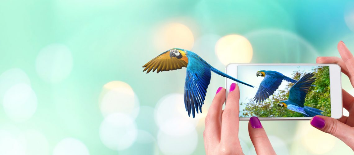Female hand holding a smartphone with macaw parrot flying coming out from the screen. Light bokeh background copy space.